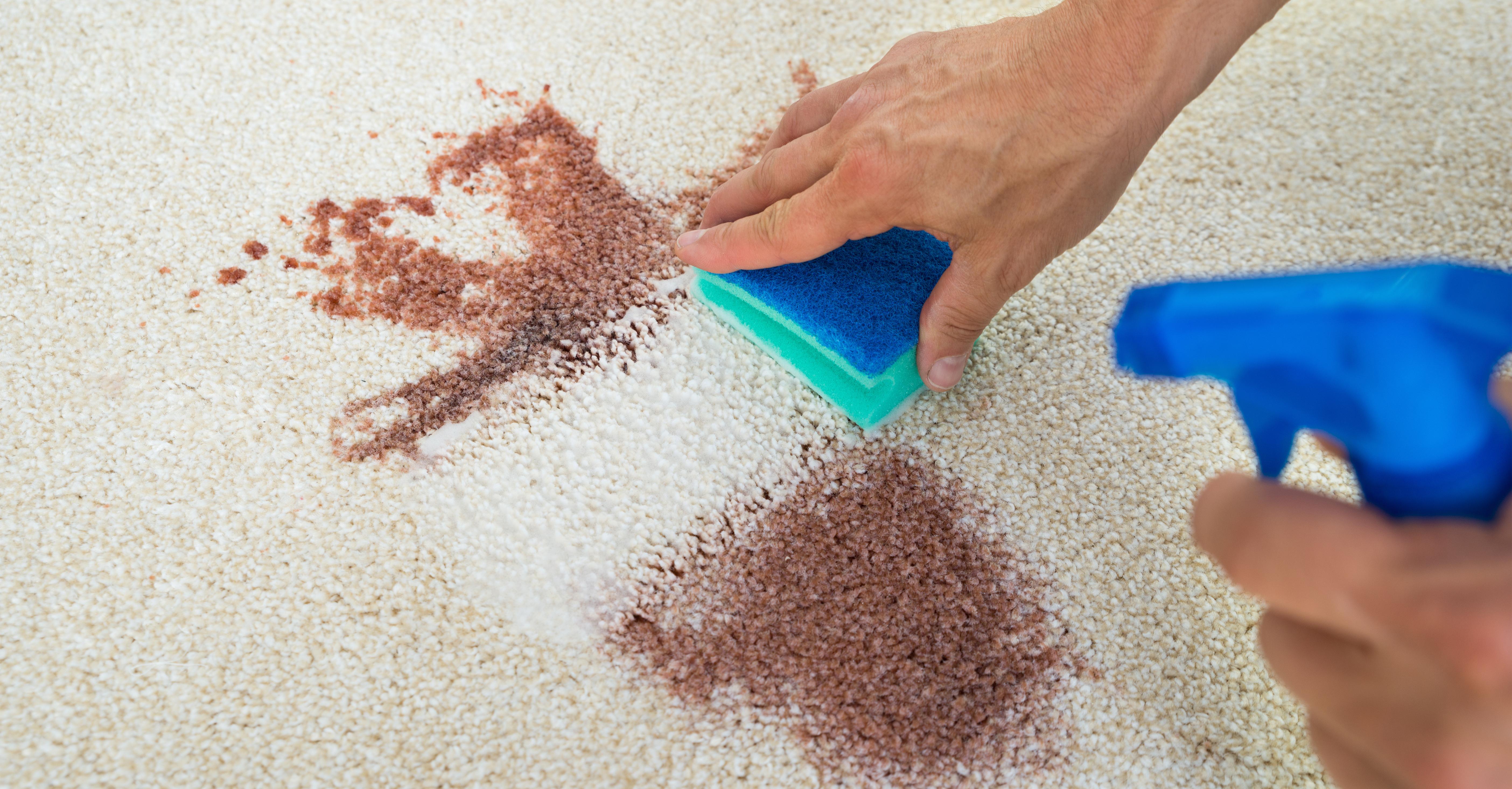 spot stain on carpet