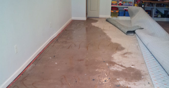 flooding damages carpet